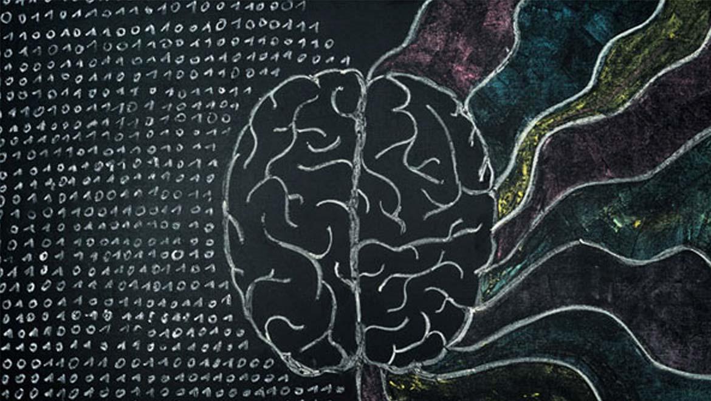 mitos sobre o cerebro